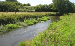 River Avon Hampshire, Wiltshire & Dorset the winner of 2017 UK River Prize and Nigel Holmes Trophy for the excellent demonstration of a whole river approach to restoration and management.